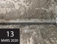 Årsmöte och seminarium 2020